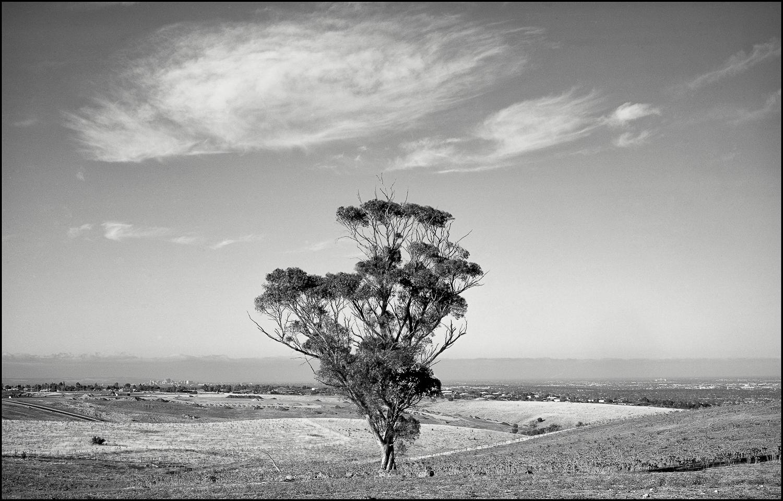 city + plains, Adelaide